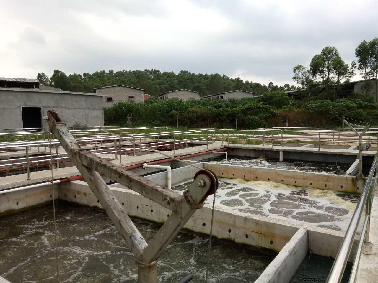 养猪废水处理亚博体育yabo88亚博体育官方网 养殖废水